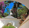 Blick aus einem Gebäude heraus auf Palmen und zahlreiche andere Pflanzen - Übernachtung während einer individuellen Wanderung in Italien