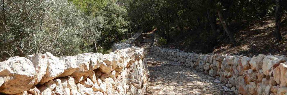eine steinerner Weg umgeben von vielen Sträuchern und Bäumen - gesehen auf einer individuellen Wanderung auf Mallorca