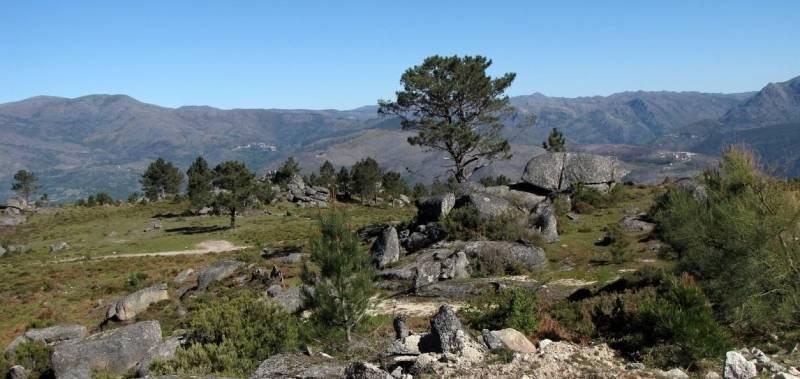 Eine steinige, begrünte Landschaft, im Hintergrund mehrere Berge - gesehen auf der individuellen Wanderung in Nord-Portugal
