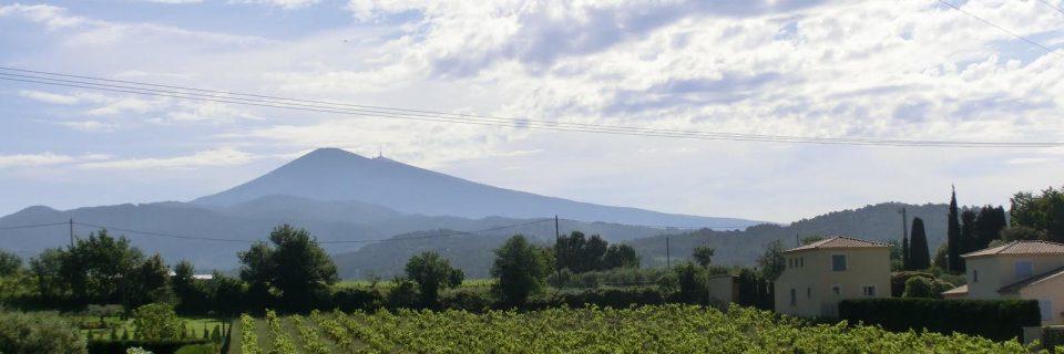 Bild zur Tour Côtes du Rhône | Süd-Frankreich