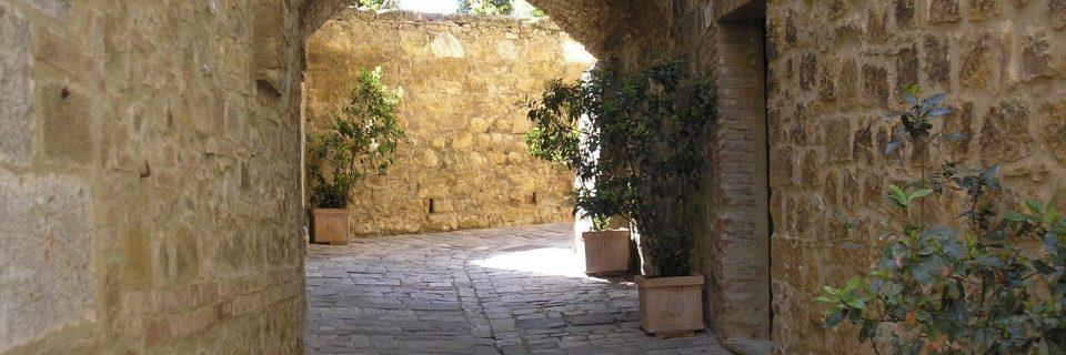 Steinerne Mauern im Schatten, davor mehrere Pflanzen - gesehen auf einer individuellen Wanderung in der Toskana